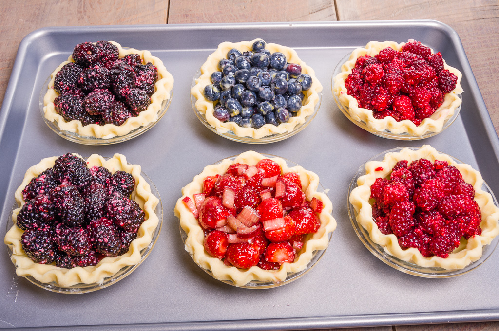 Blackberry, Blueberry, Tayberry & Strawberry Rhubarb mini Pies