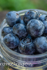 Fresh Homemade Blueberry Sauce