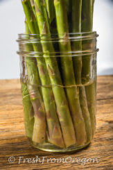 The Best Way to Store Asparagus